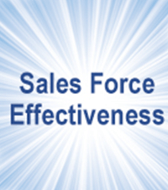 Does Your Sales Team Have the Elements of a World Class Sales Organization?